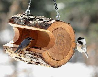 fa_madáretető